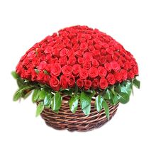 hundred red roses with green leaves send to vietnam