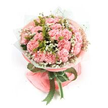 17 pink carnations with baby's breath to vietnam
