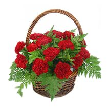 17 red carnations with green leaves to vietnam