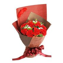 19 red carnations delivery to vietnam