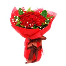 19 red carnations with greenery to vietnam