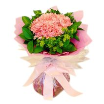 17 pink carnations delivery to vietnam