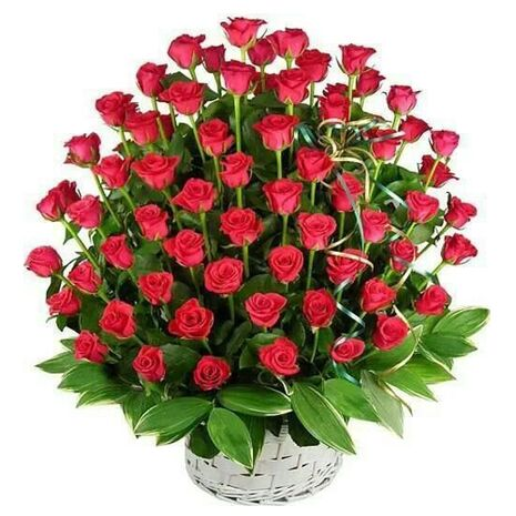 60 red roses with green leaves to vietnam