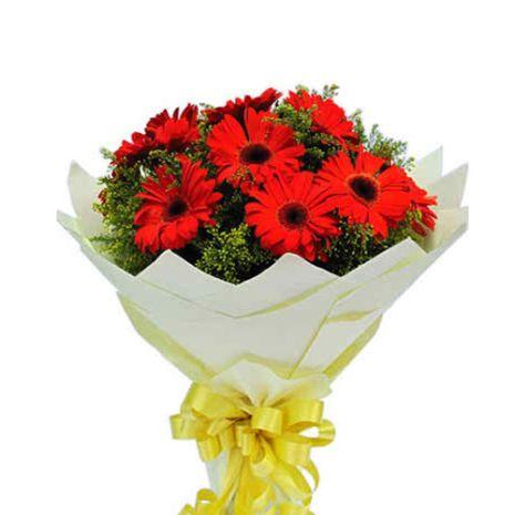 one dozen red gerbera's in bouquet to vietnam