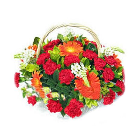 red carnations,gerbera with babys breath to vietnam