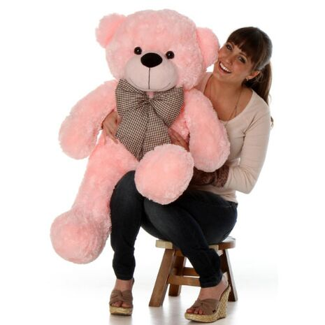 send beautiful and romantic teddy to vietnam