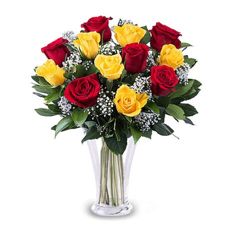 one dozen mixed color roses to vietnam