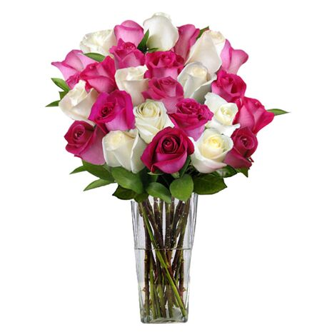 pink and white roses in vase to vietnam