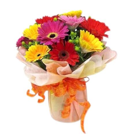 one dozen mixed color gerberas in vietnam