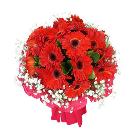 one dozen red gerbera's in bouquet to vietnam